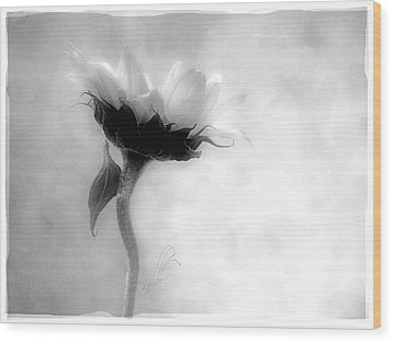 Wood Print featuring the photograph Sunflower In Profile by Louise Kumpf
