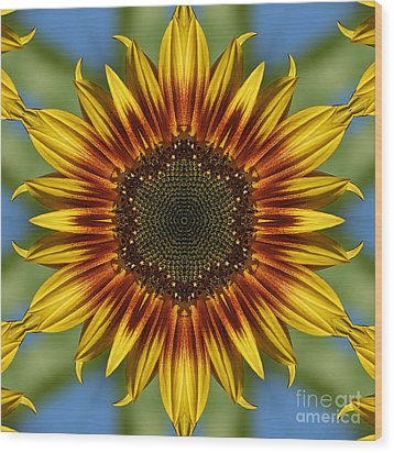 Sunflower Kaleidoscope Wood Print by Cindi Ressler