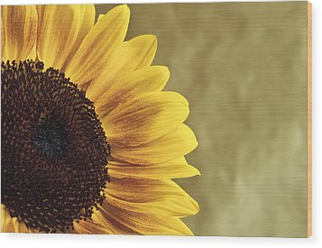 Wood Print featuring the photograph Sunflower by Lana Enderle