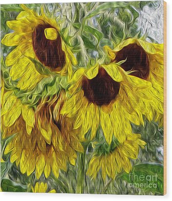 Sunflower Morn  Wood Print by Ecinja Art Works