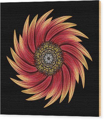 Sunflower Moulin Rouge Ix Flower Mandala Wood Print by David J Bookbinder
