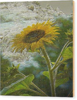 Sunflower Mountain Wood Print