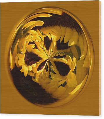 Sunflower Orb Wood Print by Paulette Thomas