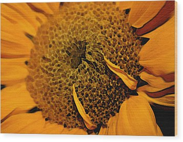 Wood Print featuring the photograph Sunflower Painting by Ellen Tully