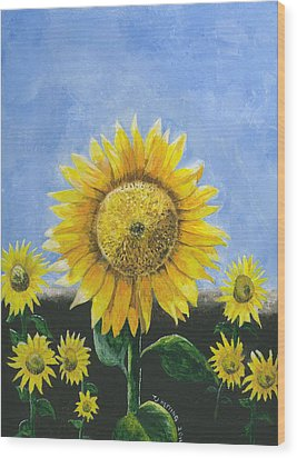 Sunflower Series One Wood Print by Thomas J Herring