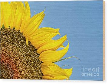 Sunflower Wood Print by Stela Taneva