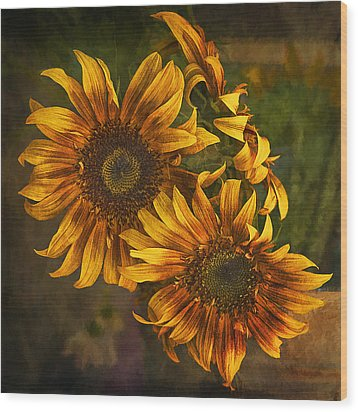 Wood Print featuring the photograph Sunflower Trio by Priscilla Burgers