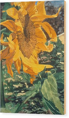 Sunflower Watercolor Painting Beautiful Flowers Sun Flower Garden Art Floral Artist K. Joann Russell Wood Print