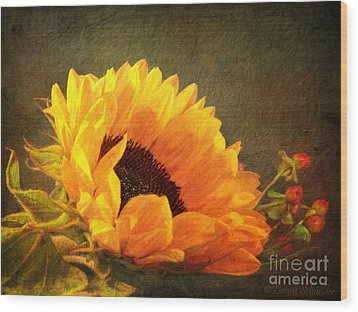 Sunflower - You Are My Sunshine Wood Print by Lianne Schneider
