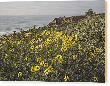 Wood Print featuring the photograph Sunflowers At Yucca Point by Lee Kirchhevel