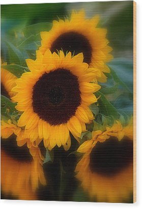 Wood Print featuring the photograph Sunflowers by Caroline Stella