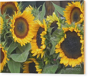Wood Print featuring the photograph Sunflowers  by Chrisann Ellis