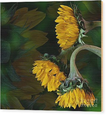 Wood Print featuring the photograph Sunflowers by Shirley Mangini