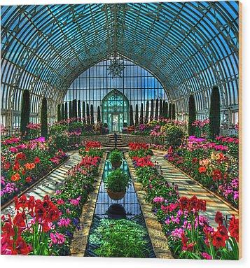Sunken Garden Marjorie Mc Neely Conservatory Wood Print