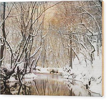 Sunkissed Winter Creek Wood Print by Jai Johnson