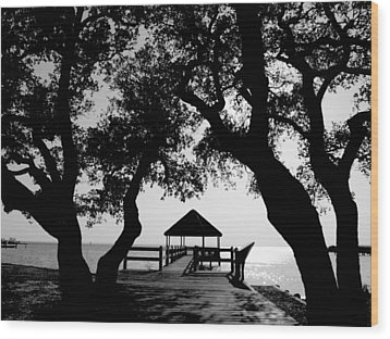 Sunlight On Currituck Sound Wood Print
