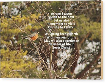 Wood Print featuring the photograph Sunlight On Robin With Poetry by Lorna Rogers Photography
