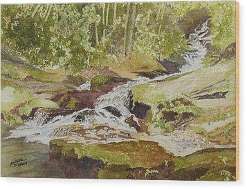 Sunlight Rocks And Water  II  Wood Print by Joel Deutsch