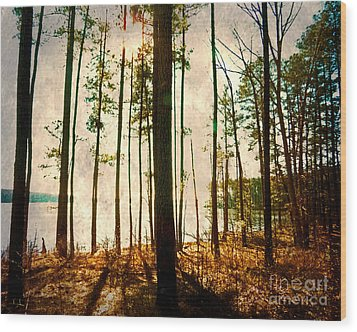 Sunlight Through The Trees Wood Print