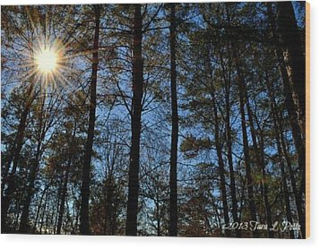 Wood Print featuring the photograph Sunlight Through Trees by Tara Potts