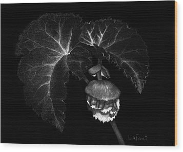 Wood Print featuring the drawing Sunlit Begonia by Sandra LaFaut