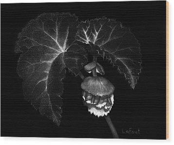 Sunlit Begonia Wood Print by Sandra LaFaut