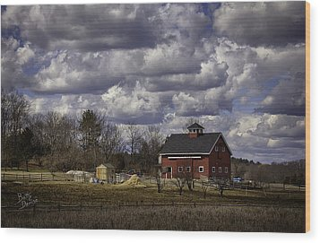 Wood Print featuring the photograph Sunlit Farm by Betty Denise