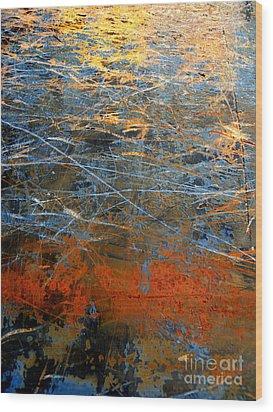 Sunlit Fibers Wood Print