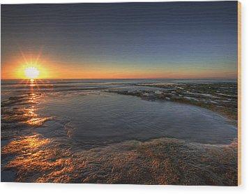 Sunlit Pool Wood Print