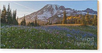 Sunlit Rainier Meadows Wood Print by Mike Reid