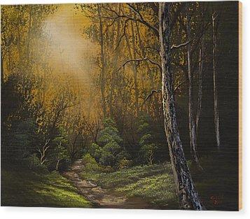 Sunlit Trail Wood Print by C Steele