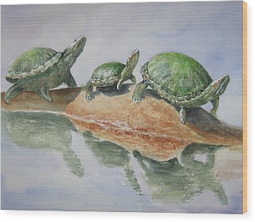 Sunning Turtles Wood Print