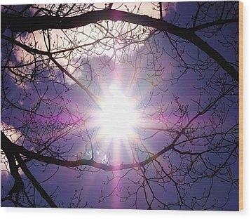 Wood Print featuring the photograph Sunny Afternoon by Sherman Perry