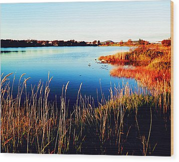 Wood Print featuring the photograph Sunny Afternoon by Zinvolle Art