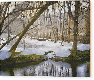 Sunny But So Cold Wood Print by Gun Legler