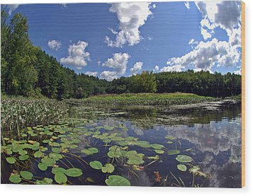 Sunny Day On The Merrimack Wood Print by Rick Frost