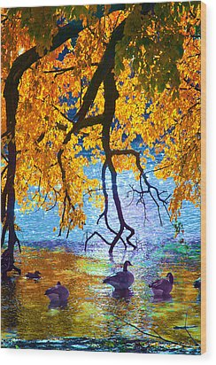 Sunny Wood Print by Kat Besthorn