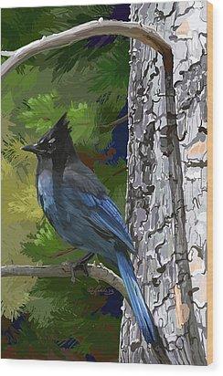 Sunny Stellers Jay Wood Print