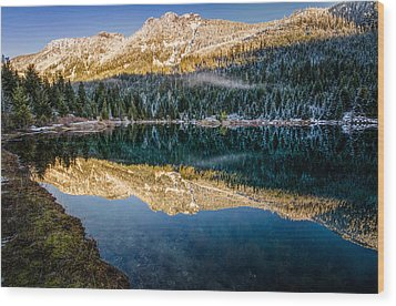 Sunny Tops And Icy Skirts At Gold Creek Pond Wood Print by Brian Xavier