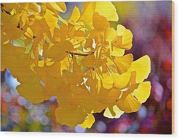 Sunny Yellow Ginkgo Wood Print