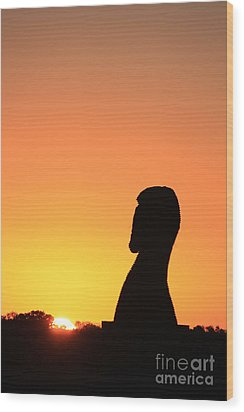 Sunrise 20 Wood Print