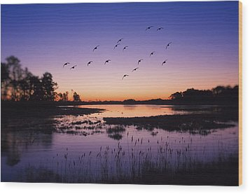 Sunrise At Assateague - Wetlands - Silhouette  Wood Print