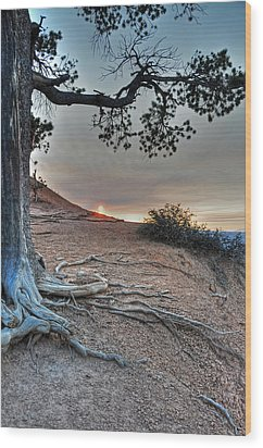 Sunrise At Bryce Canyon Wood Print by Darlene Bushue