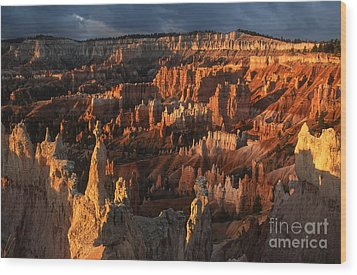 Sunrise At Bryce Canyon Wood Print by Sandra Bronstein