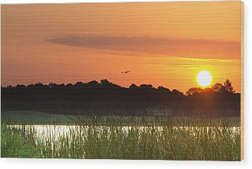 Sunrise At Lakewood Ranch Florida Wood Print
