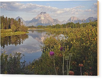 Sunrise At Oxbow Bend 5 Wood Print by Marty Koch