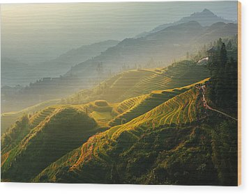 Sunrise At Terrace In Guangxi China 2 Wood Print
