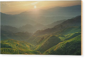Sunrise At Terrace In Guangxi China 7 Wood Print