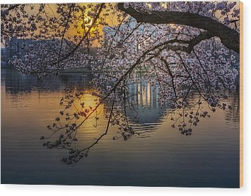 Sunrise At The Thomas Jefferson Memorial Wood Print