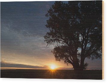Sunrise Awaited Wood Print